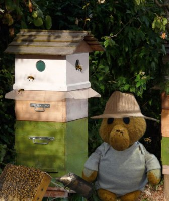 Premo from London - Bees in my garden